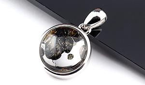 【隕石特集】パラサイト・セリコ隕石ペンダント【ラウンドオーバル】約16mm※チェーン別売り